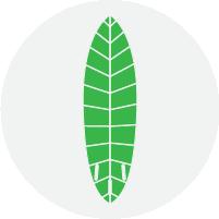 Sustainable Choice eco board